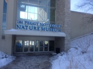 The Peggy Notebaert Nature Museum